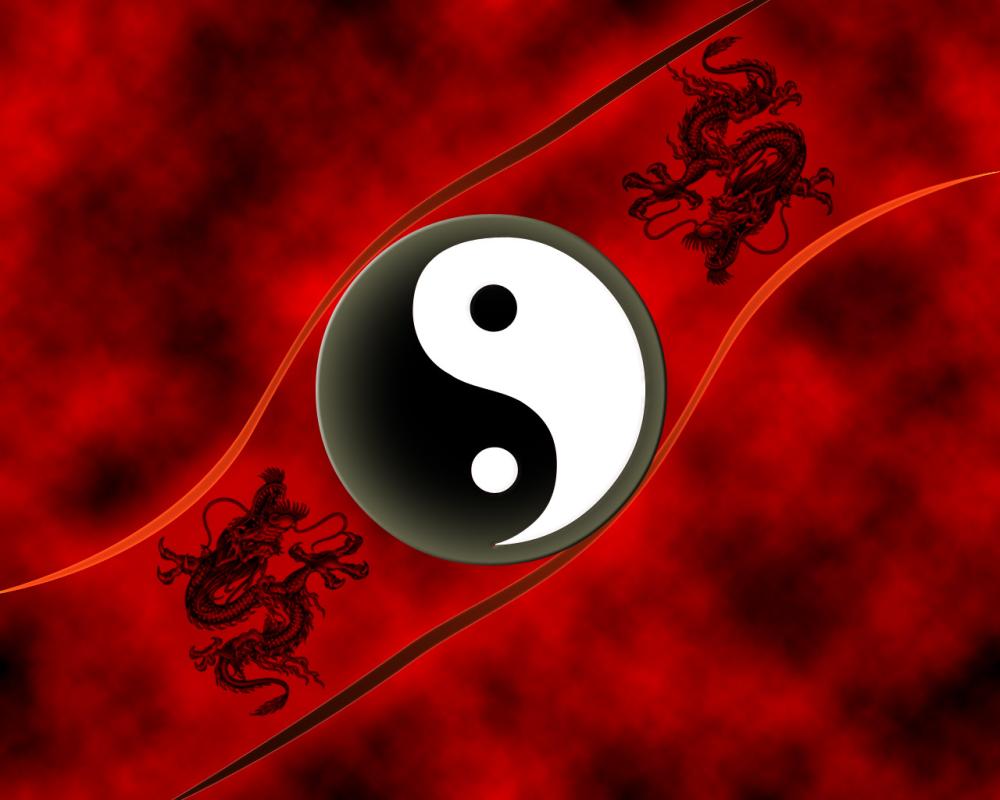 TAO YOLU teorik eğitimleri