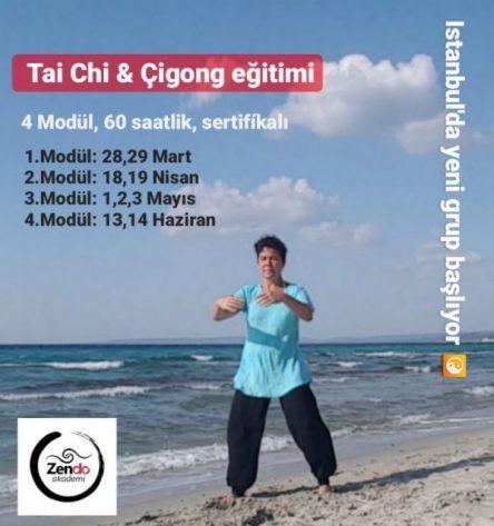 İSTANBUL, Bahar dönemi 2020, Tai Chi Qigong Temelleri