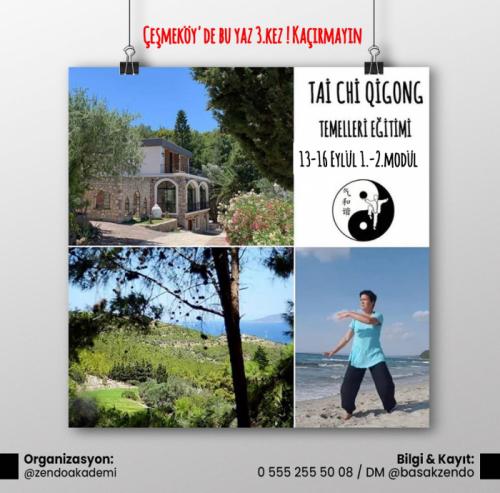 Tai Chi Qigong Temelleri, Çeşmeköy, İzmir