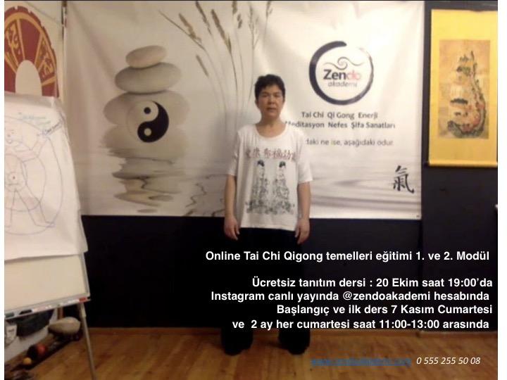 Tai Chi Qigong Temelleri online eğitimi, Güz dönemi 2020